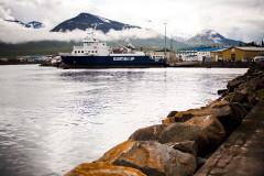 Fiskidagurinn mikli czyli Święto Ryby w Dalvík