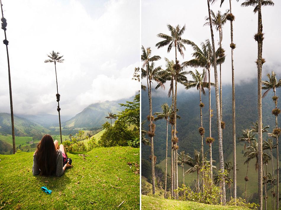 cocora, colombia (8)