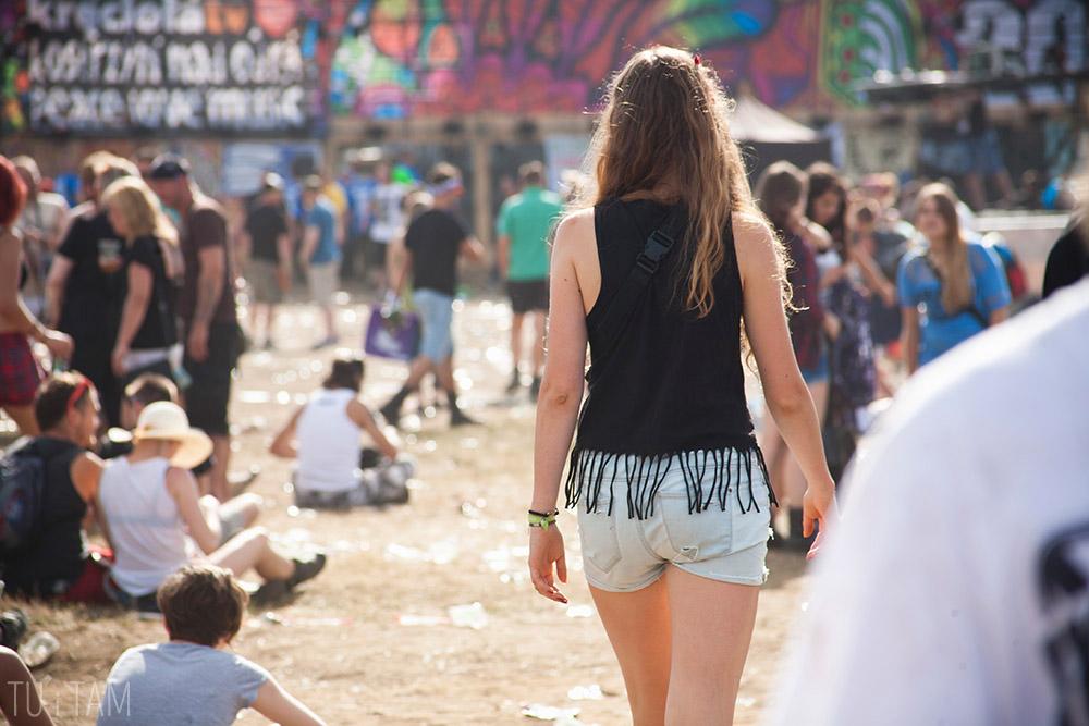 Woodstock_2014 (21)