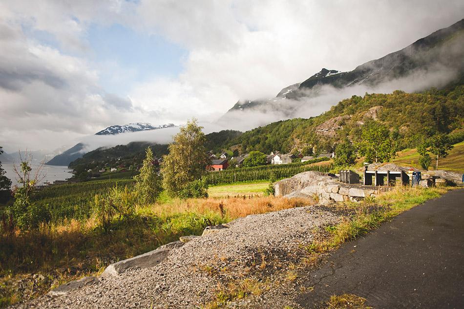 Hardangerfjord (25)