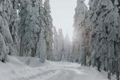 Zima w Samotni