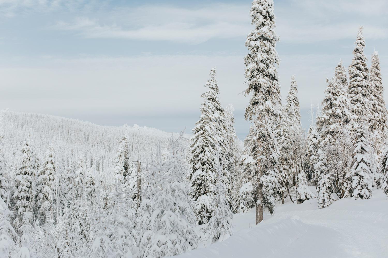 góry zimą samotnia104